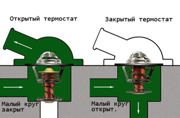 Схема функционирования ОЖ в системе по большому и малому кругу